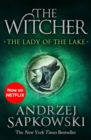 The Lady of the Lake : Witcher 5   Now a major Netflix show - eBook