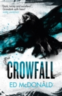 Crowfall : The Raven's Mark Book Three - eBook