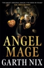 Angel Mage - Book