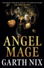 Angel Mage - eBook