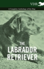 The Labrador Retriever - A Complete Anthology of the Dog - eBook