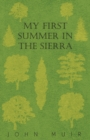 My First Summer In The Sierra - eBook