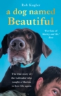 A Dog Named Beautiful : The true story of the Labrador who taught a Marine to love life again - eBook