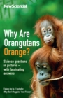 Why Are Orangutans Orange? : Science questions in pictures -- with fascinating answers - eBook