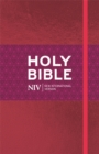 NIV Ruby Thinline Bible : Pink Shimmer Imitation Leather - Book