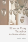 Illness as Many Narratives : Arts, Medicine and Culture - Book