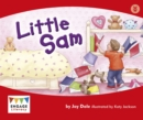 Little Sam - eBook