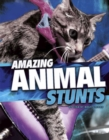 Amazing Animal Stunts - eBook