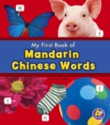 Mandarin Chinese Words - Book