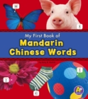 Mandarin Chinese Words - eBook