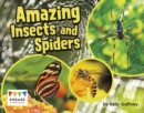 Amazing Insects and Spiders - eBook