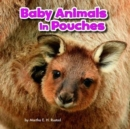 Baby Animals in Pouches - Book