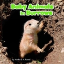 Baby Animals in Burrows - Book