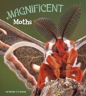 Magnificent Moths - Book