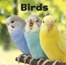 Birds - eBook