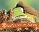 Let's Look at Spring - Book