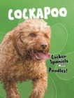 Cockapoo : Cocker Spaniels Meet Poodles! - Book