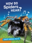 How Do Spiders Hear? - Book
