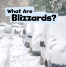 What Are Blizzards? - eBook