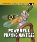 Powerful Praying Mantises - Book