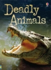 Beginners Plus Deadly Animals - Book