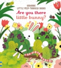 Are you there Little Bunny? - Book