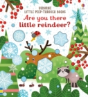 Are You There Little Reindeer? - Book