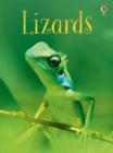 Lizards - Book