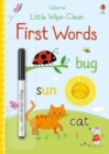 Little Wipe-Clean First Words - Book