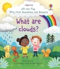 Lift-the-flap Very First Questions and Answers What are clouds? - Book