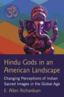 Hindu Gods in an American Landscape : Changing Perceptions of Indian Sacred Images in the Global Age - eBook