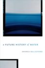 A Future History of Water - eBook