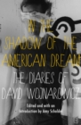 In the Shadow of the American Dream : The Diaries of David Wojnarowicz - eBook