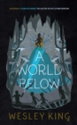 A World Below - Book