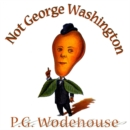 Not George Washington - eAudiobook
