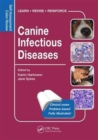 Canine Infectious Diseases : Self-Assessment Color Review - Book