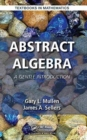 Abstract Algebra : A Gentle Introduction - Book