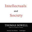 Intellectuals and Society - eAudiobook