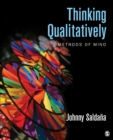 Thinking Qualitatively : Methods of Mind - eBook