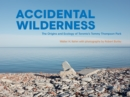 Accidental Wilderness : The Origins and Ecology of Toronto's Tommy Thompson Park - eBook