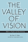 The Valley of Vision : Blake as Prophet and Revolutionary - eBook