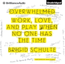 Overwhelmed : Work, Love, and Play When No One Has the Time - eAudiobook