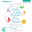 The Only Little Prayer You Need : The Shortest Route to a Life of Joy, Abundance, and Peace of Mind - eAudiobook