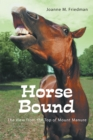 Horse Bound : The View from the Top of Mount Manure - eBook
