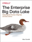 The Enterprise Big Data Lake - Book