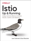 Istio: Up and Running : Using a Service Mesh to Connect, Secure, Control, and Observe - Book
