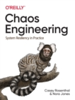 Chaos Engineering : System Resiliency in Practice - Book
