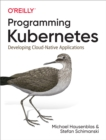 Programming Kubernetes : Developing Cloud-Native Applications - eBook