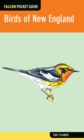 Birds of New England - eBook