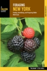 Foraging New York : Finding, Identifying, and Preparing Edible Wild Foods - eBook